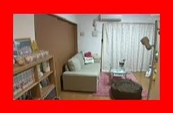 ロンハー ホントはイイ女GPの片岡安祐美の部屋写真2