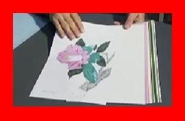 怒り新党 林敬三さんの立体切り絵 情熱が半端ない切り絵作家